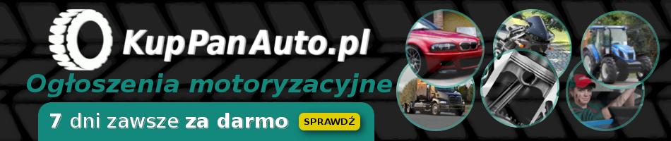 Og�lnopolska internetowa auto gie�da - og�oszenia motoryzacyjne
